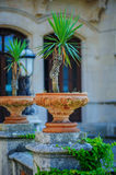 Park detail with plants in pot at Miramare castle, Trieste, Italy Royalty Free Stock Photography