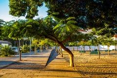 Park dichtbij de Kerk in Santa Cruz royalty-vrije stock afbeelding