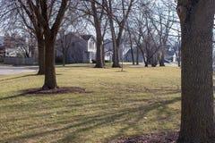 Park die in de voorsteden met bomen plaatsen stock afbeeldingen