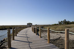 Park do carreiro fundo,Aveiro, Portugal. Royalty Free Stock Image