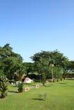 Park door kust Royalty-vrije Stock Afbeeldingen