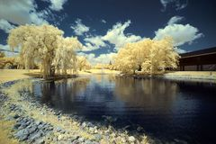 Park. In downtown Crystal Lake, Illinois, photographed in infrared Royalty Free Stock Photos