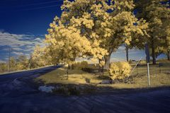 Park. In downtown Crystal Lake, Illinois, photographed in infrared Stock Photos