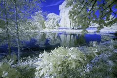 Park. In downtown Crystal Lake, Illinois, photographed in infrared Stock Photo