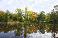 Park in the early fall with the lake. Park in the early fall with the lake royalty free stock photos