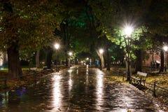 Park in een regen, nachtscène Royalty-vrije Stock Fotografie