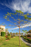 Park in Egyptisch hotel Stock Foto