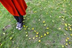 Park ein Fuß auf dem Gras Lizenzfreies Stockbild