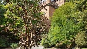 Park in einem mittelalterlichen Dorf in Turin stock video footage