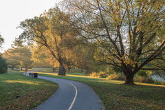 Park an einem Morgen Stockfoto