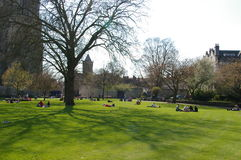 Park in England. In the nice day Stock Photography
