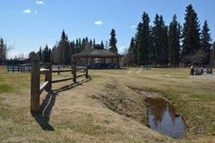 Park Fairbanks obrazy stock