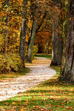 Park in fall Royalty Free Stock Photo