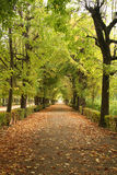 Park in the fall. Royal park surrounding Schonbrunn palace in Vienna. October Stock Image