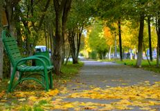 Park in the fall royalty free stock images