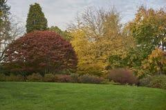 Park at fall Royalty Free Stock Image