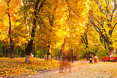 Park in the fall. People strolling in a beautiful autumnal park. Long Exposure Stock Image