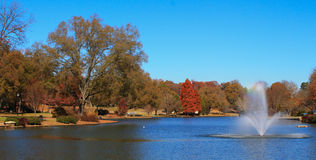 Park in the Fall 1 Stock Photo