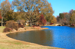 Park in the Fall 2 Stock Image