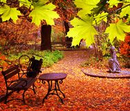 Park in fall time Royalty Free Stock Image