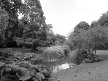 Park Fiction. Black and white Hyde Park in London stock image