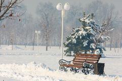 Park. First prizident, lands in the fog in winter Stock Photo