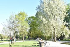 A park at the first Spring sun stock image