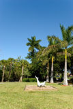 Park in florida - with grass and palms Royalty Free Stock Photo