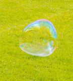 In the Park flying a large soap bubble. Big bubble flies over the field royalty free stock photos