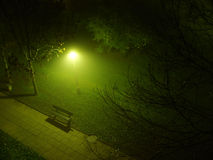 Park in fog Royalty Free Stock Image
