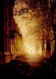 Park in a fog. Gothic scene. Royalty Free Stock Photography