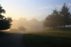 Park in Foggy Morning Royalty Free Stock Photography