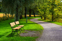 Park. Footpath and benchs in Royalty Free Stock Images