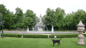 Park with fountain Eger stock video footage