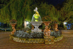 Park fountain at night. Small town park fountain at night Stock Images