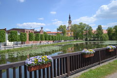 Park at Frankfort on the Oder. Lake with flower's Royalty Free Stock Photography