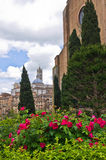 Park in front of a church with beautiful red roses and Cypress trees in Siena Stock Photos