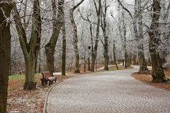 Park in frost Royalty Free Stock Photo