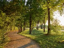 Parks. Park full of greenery in the suburbs of Milan, Cernusco sul Naviglio stock image