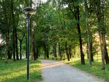Parks. Park full of greenery in the suburbs of Milan, Cernusco sul Naviglio royalty free stock images