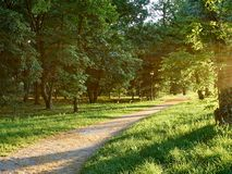 Parks. Park full of greenery in the suburbs of Milan, Cernusco sul Naviglio stock photos