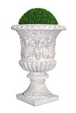 Park/garden flowerpot with evergreen plant. Park/garden flowerpot with ornament and evergreen plant in classic style isolated on white with clipping path stock photo