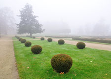 Park garden in fog Stock Photo
