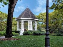 park garden piwonii obraz royalty free
