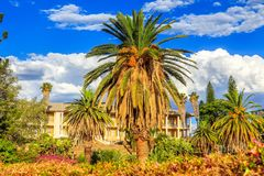 Park and garden with yellow palace building hidden behind tall palms, Windhoek, Namibia. Africa african architecture assembly blue capital center central city royalty free stock photos