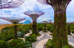 Park Gardens by the Bay - Singapore Royalty Free Stock Image