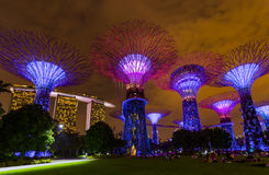 Park Gardens by the Bay - Singapore Stock Photo