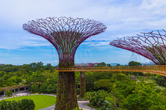 Park Gardens by the Bay - Singapore Royalty Free Stock Photography