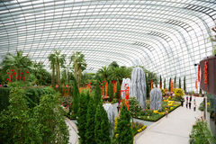 Park Gardens by the Bay in Sinngapore Stock Photos