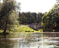 Park of Gatchina Stock Images